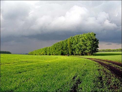 В михайловском районе алтайского края